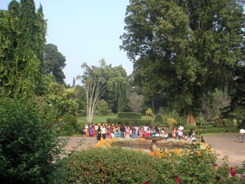 Перадения. Ботанический сад. Дети на экскурсии.