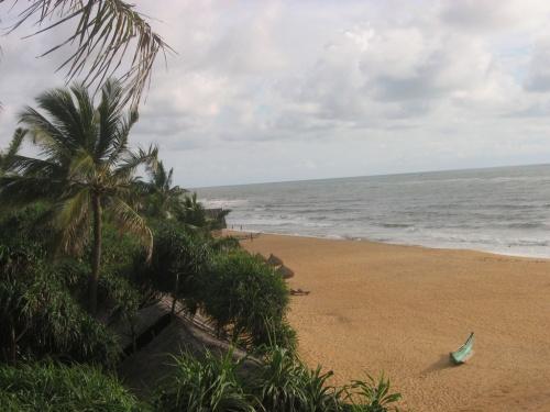 Шри-Ланка. Пляж.