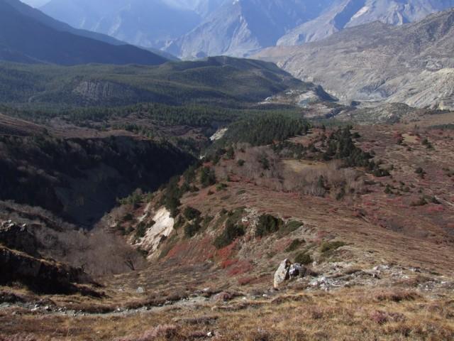 18. Долина Кайсанг. Виден военный городок и сосновый лес над ним, из которого не захочется уходить.