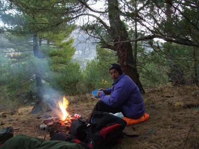 5. Ужин в сосновом лесу.