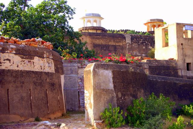 Цветы украшают заброшенную крепость