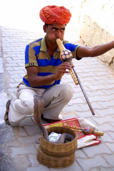 Местный заклинатель змей