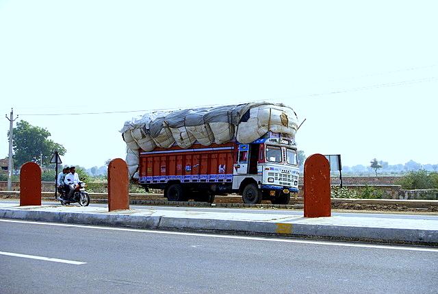 Индийские барбухайки