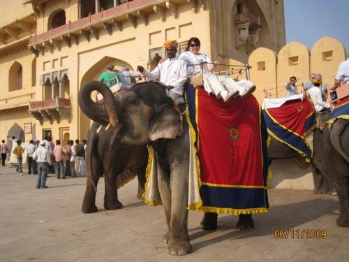 Катание на слонах. Слон очень опасное животное. Он очень большой