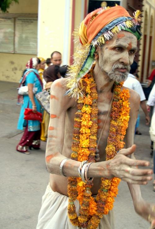 Таких можно увидеть только в Индии