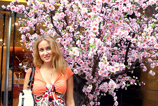 Цветы сливы - символ Пекина