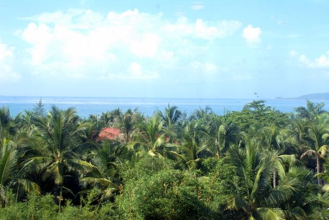 Морской берег утопает в тропической зелени