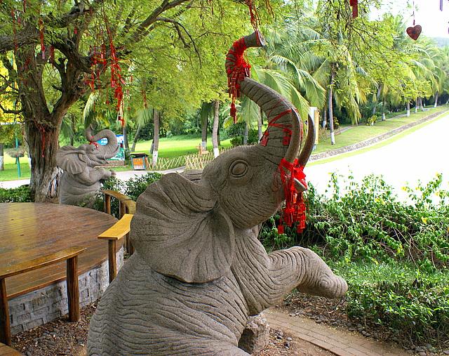 Безработные слоны