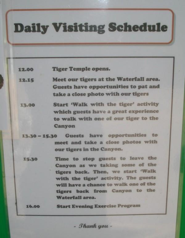 Расписание в храме тигров