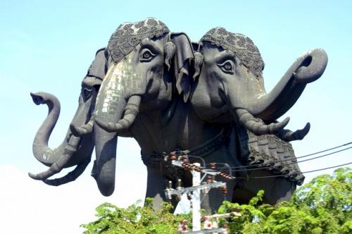 Слоны запутались в проводах )