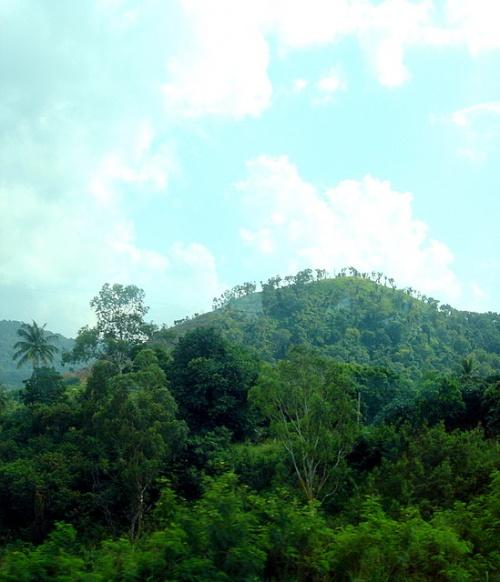 Пейзаж по дороге в Паттайю