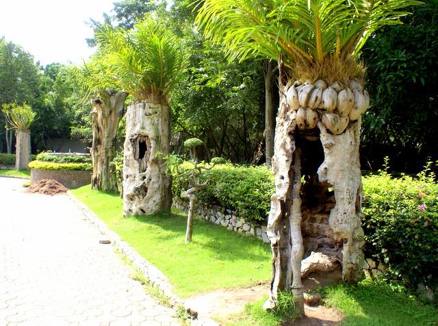 Тропические прически