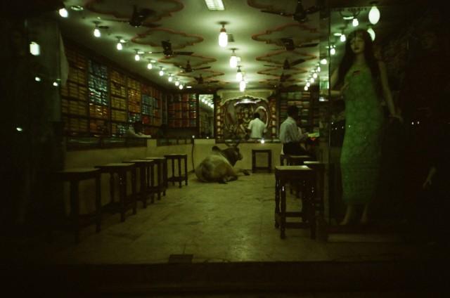 Корова работающая в магазине , Варанаси.