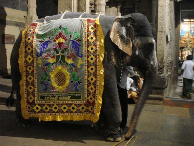 храмовый слоник