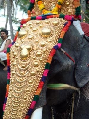 Слоны на фестивале в Varkala