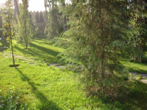 сад Филармонии