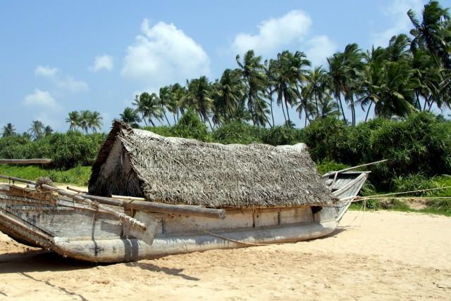Крыша из пальмовых листьев защищает от палящего солнца