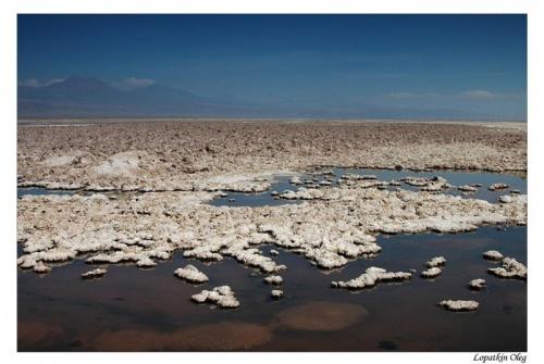 Лагуна Чакса, входит в состав Salar De Atacama