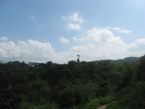 слонячья башня