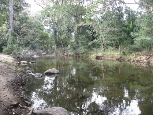 река из которой пьет проводник и жив