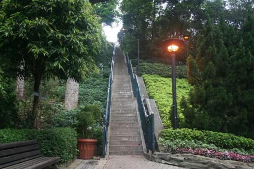 лестница счастья