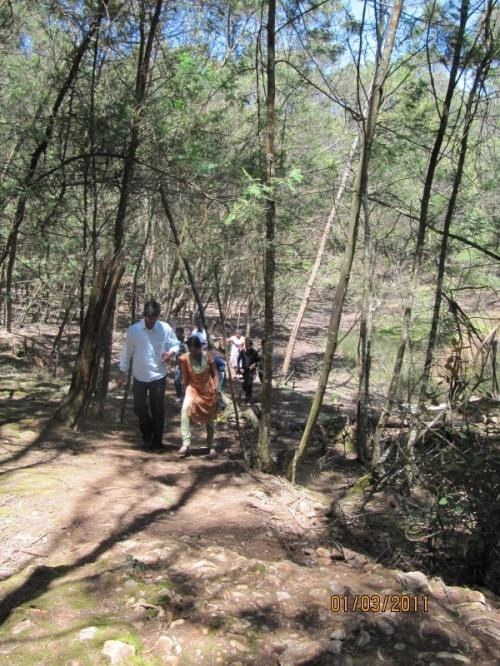 наша бригада по лесу шагает