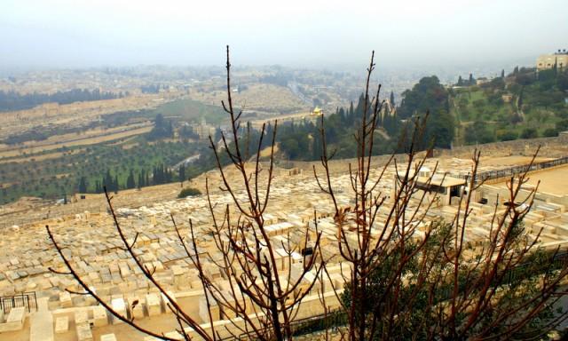 Многие цари Иудеи похоронены здесь