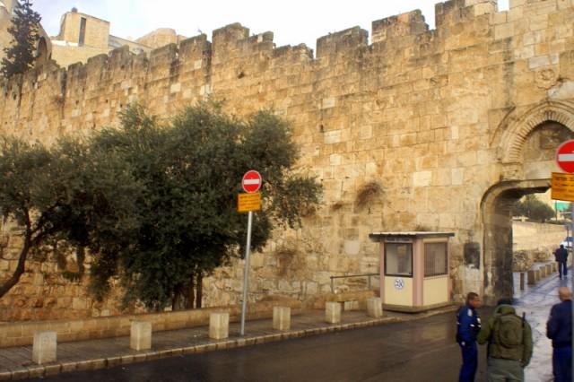 В Старый город  ведут 7 ворот. Это Навозные ворота)