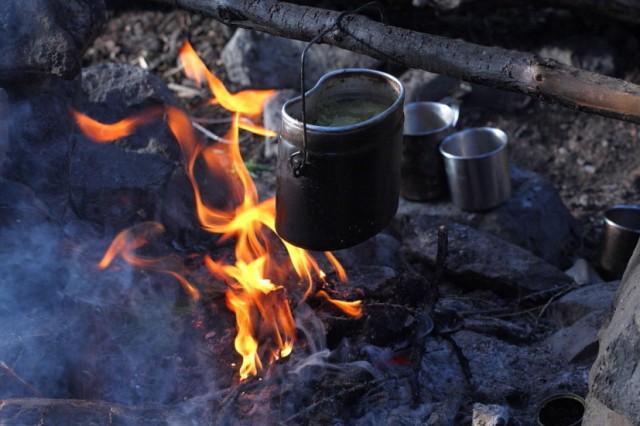 чай СОСТАВ(бадан,курильский ч.,л.смородины,золотой корень,жимолость)