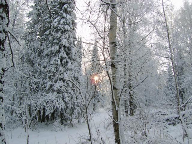 снег..