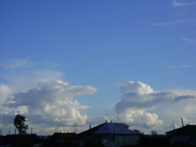 облака-медведи