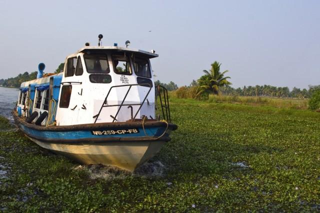 пароходик или катер :) Транспортное средство