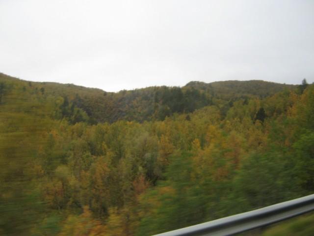 Осенняя пора..
