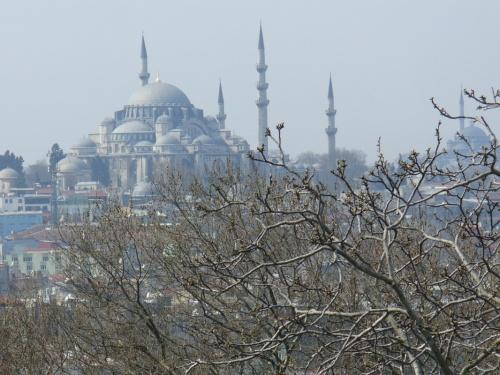 вид на Голубую мечеть с Топкапы
