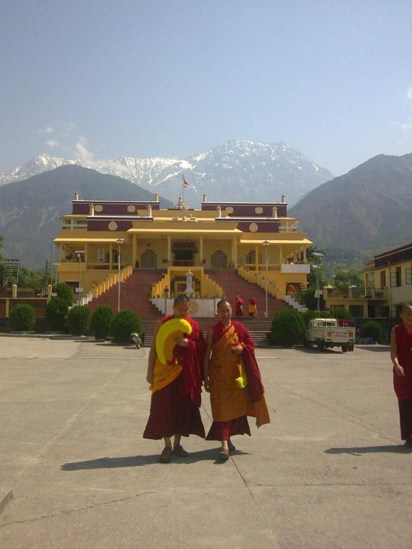 Gyuto Tantric Monastery, Дарамсала