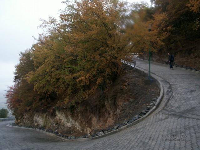 Дорога в Некреси