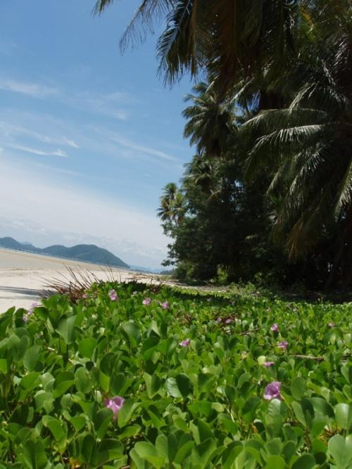 пляж рыбацкой деревушки