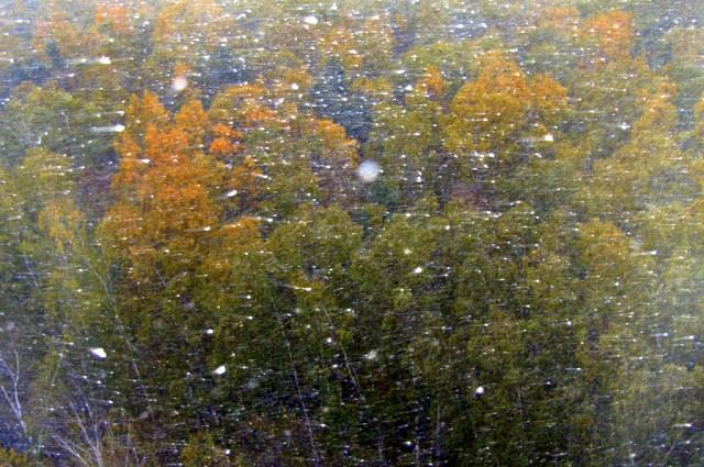 15 октября повалил крупными хлопьями снег