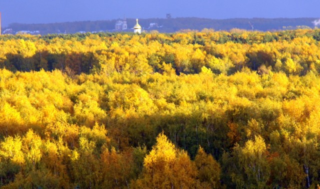 Осенний опенэйр