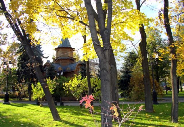 Лесной уголок возле Храма Христа Спасителя