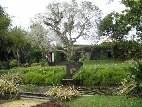 The Brief Gardens