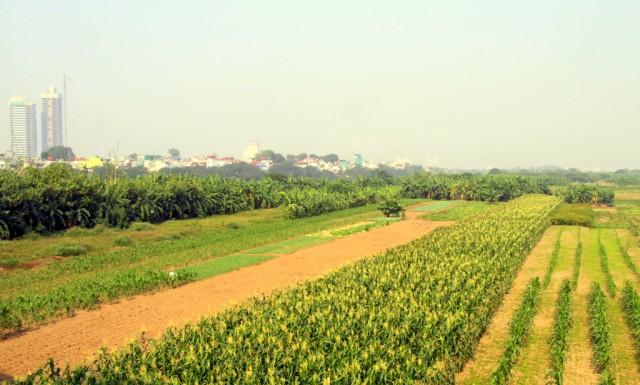 В Ханое начали строить высотки