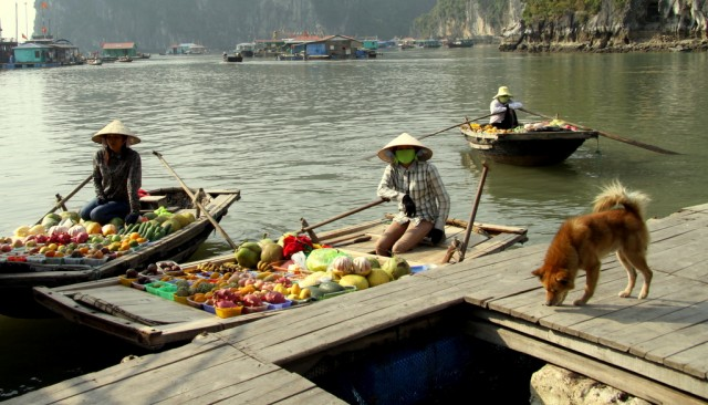 Плавучий рынок подогнал экзотические фрукты