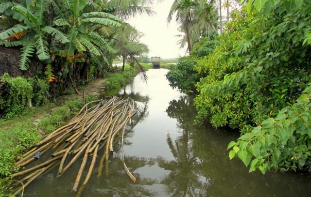 По каналам отправляют воду на рисовые поля