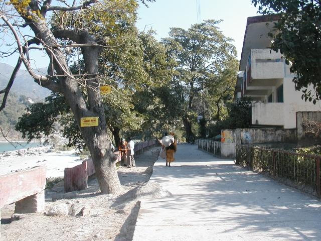 Дорога из Сваргашрама в Лакшман-Джулу