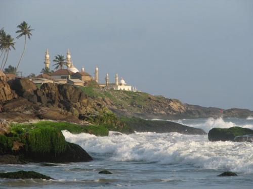 Одна мечеть из многих