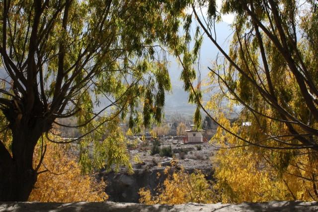после каменной пустыни в Джомсоме появились зелено-золотые деревья
