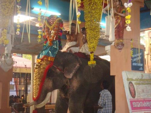и праздничный слон