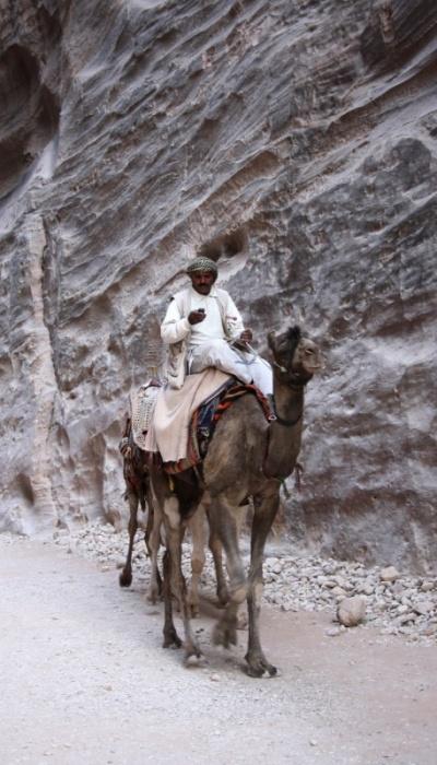 посадка на верблюде по-бедуински