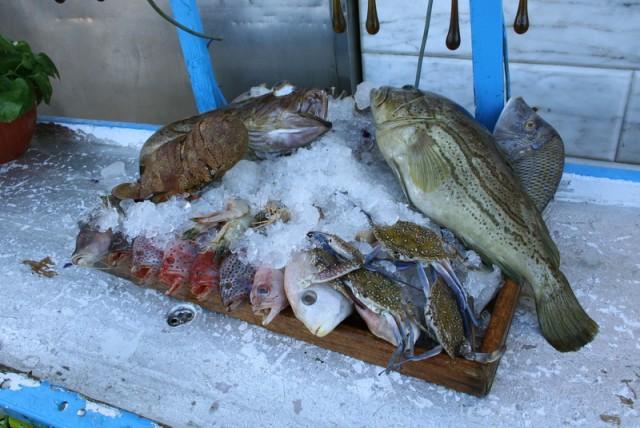 рыбы недавно плававшие в море